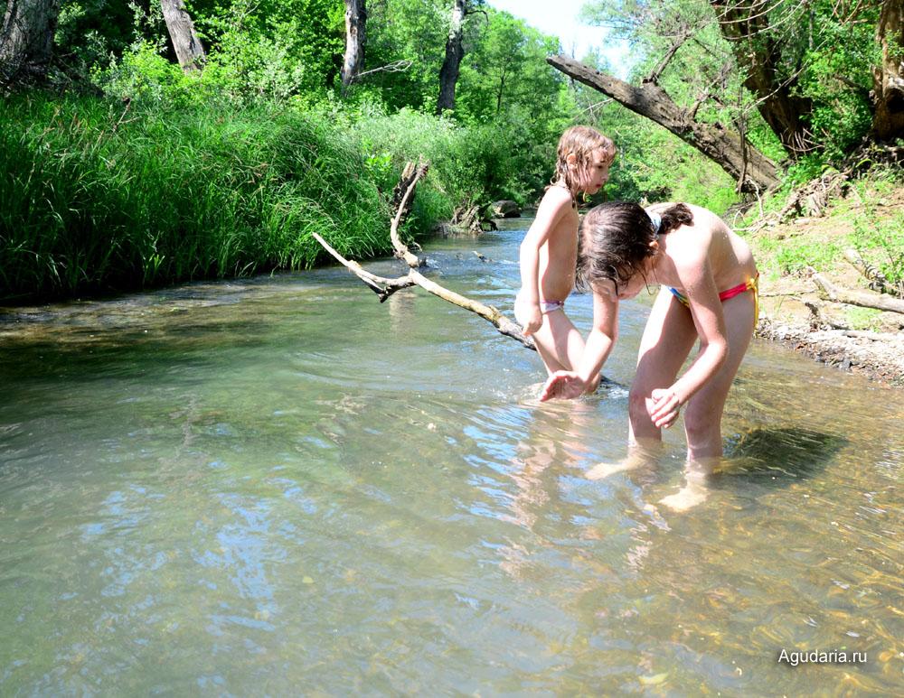 В основном в реке Шебш водится голавль.