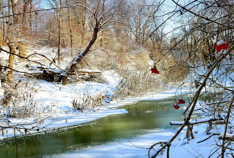 Река рядом с поместьем