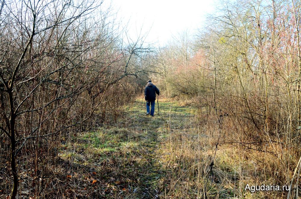 По саду идёт отец мужа, Анатолий Павлович.