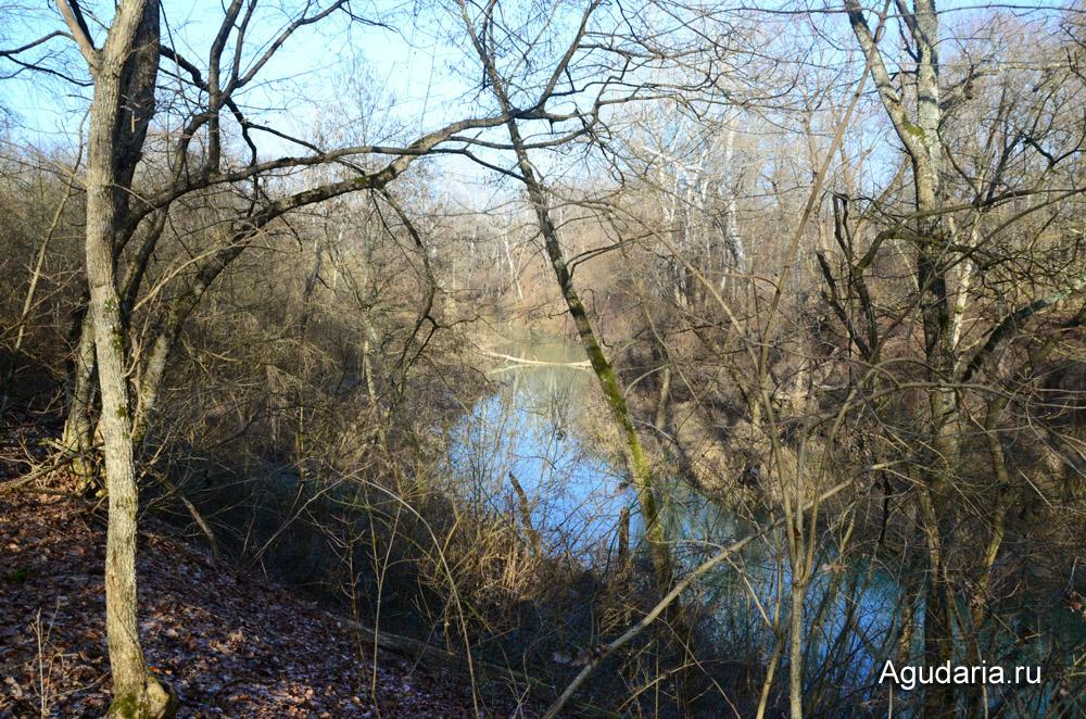 Река Шебш в феврале